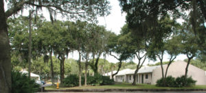 apartments with trees